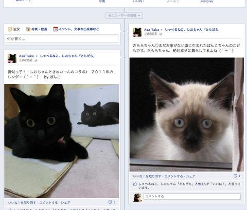 しおちゃんのコミュニティサイトオープン!