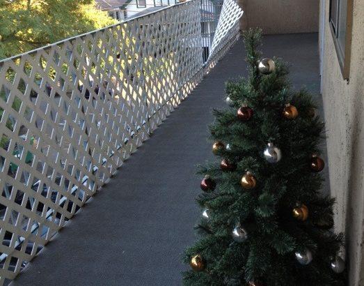 クリスマスツリーその後
