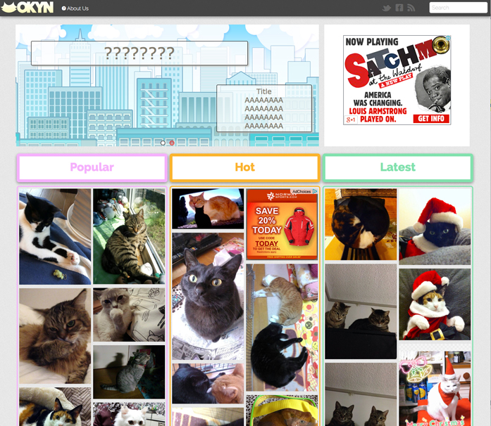 OKYN-Submission-site-Screenshot