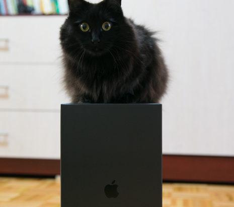 しおちゃんからアップルへ