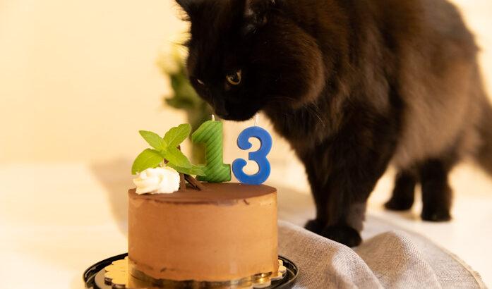 しおちゃんの誕生日はこんなでした