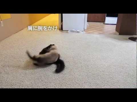 ティーちゃんのレスリング技、公開!