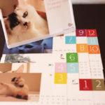 しっぽなちゃんカレンダーリリース!