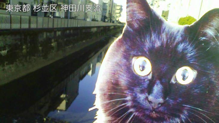 しおちゃんの、世界の旅【本編】!!