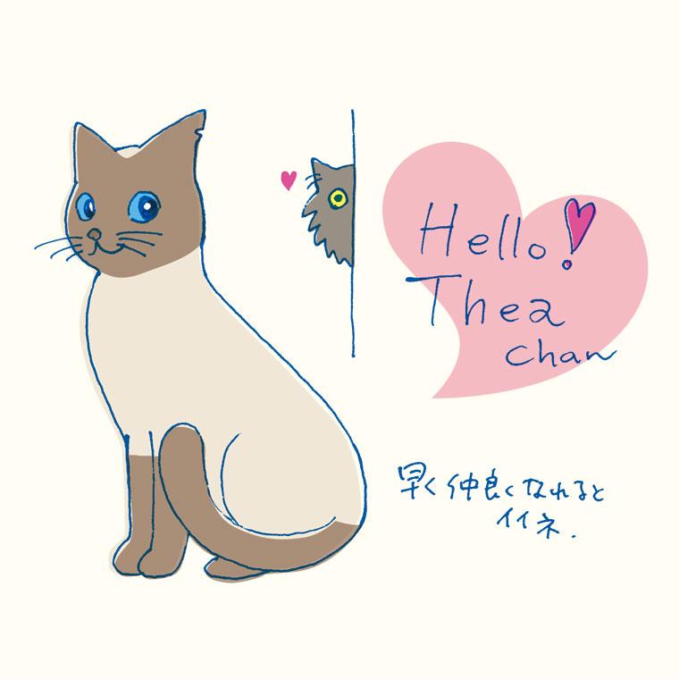 thea-chan.jpg